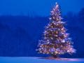 Rozsvícení vánočního stromu a výstava ručních prací 1